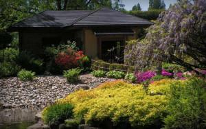 ogród japoński wrocław herbaciarnia