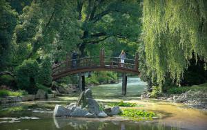 ogród japoński wrocław randka